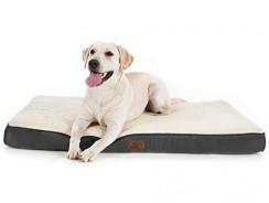 20 Best Dog Bed Black Friday 2021 Deals & Sales
